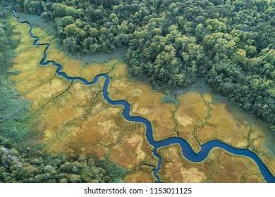 Aerial view of a creek in a salt marsh