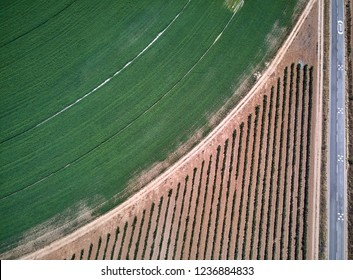 Aerial view of crop field with circular pivot irrigation sprinkler.