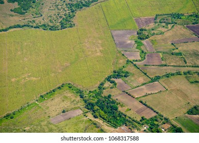 Aerial view of cultivated fields. After economic changes in the Caribbean island more people and resources are destined to agriculture