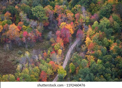 Aerial view of curving dirt road and trees in autumn color in northern Minnesota