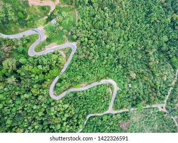 Aerial view of curvy mountain road through a jungle