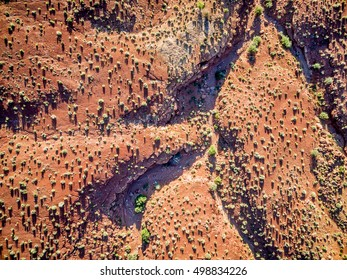 aerial view of a desert with a coarse vegetation near Moab, Utah - sunrise scenery with long shadows