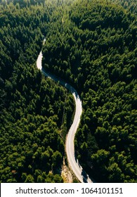 Aerial view from drone of curve road on the mountain with green forest in Greece