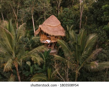 Aerial view from drone happy travel couple on hammock balcony of bamboo tree house with jungle nature view. Vacation in beaitiful hidden place, honeymoon on Bali island