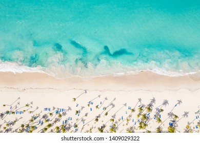 Aerial view from drone on caribbean seashore with coconut palm trees and sunbeds. Summer holidays. Travel destination