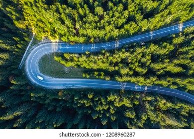 Aerial view from a drone of serpentine road through vibrant green pine forest