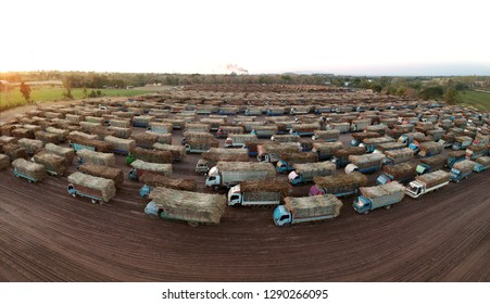 aerial view from drone trucks loaded with sugar cane in a truck parking outside sugar cane factory.