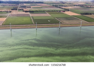 Aerial view Dutch coast of province Flevoland in hot summer, the sea is covered with blue-green algae - Cyanobacteria - through eutrophication
