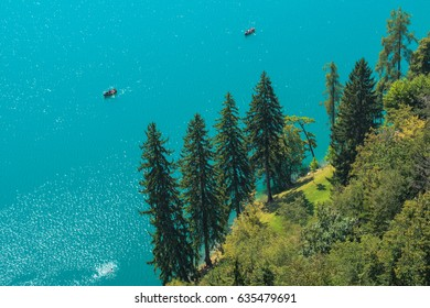 Aerial view of evergreen pine and fir trees by the lake Bled in Slovenia on sunny summer afternoon, clear freshwater surface as copy space
