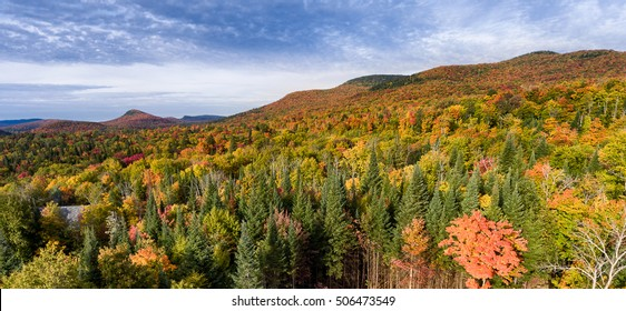 Aerial view of the fall foliage at its peak in the Mont Tremblant National Park Area, Quebec, Canada