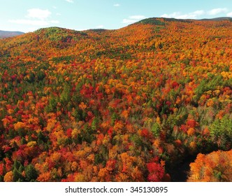 Aerial view of fall tree colors in Maine. Bright autumn foliage.