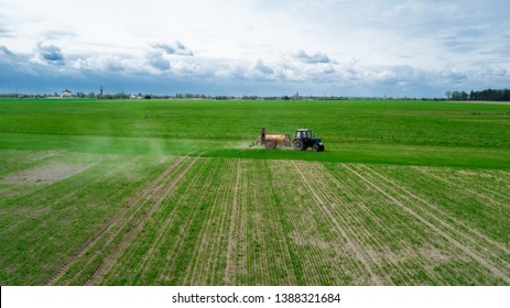 Aerial view,  Farmer on a tractor with a sprayer makes fertilizer for young vegetables