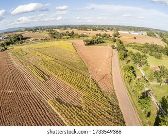 Aerial view of farms with plantation, trees, fields, meadows and road, Venancio Aires, Rio Grande do Sul, Brasil