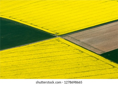 aerial view of fields of colza at Saint-Laurent-la-Gâtine in the department of Eure-et-Loir in France