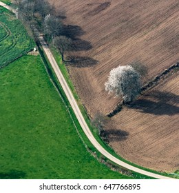Aerial view of fields near Flers - 61