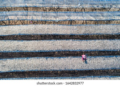 Aerial view of fishermen drying fish in Rayong province Thailand,Life photo, street photo, woman drying fish, Life Concept