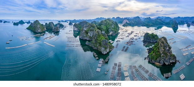 Aerial view fishing village and rock island, Bai Tu Long Bay, Vietnam, Southeast Asia. UNESCO World Heritage Site. Junk boat cruise to Ha Long Bay. Popular landmark, famous destination of Vietnam