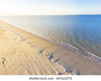 Aerial view flock of gulls on a sandy beach. Flying seagulls over the shore of Galveston beach with calm wave, foam and blue sky during sunset in Texas, America. Natural background.