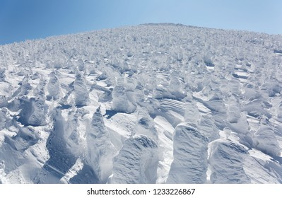 Aerial view of a forest of giant Juhyo ( ice trees or snow monsters) on the snowy mountainside under blue clear sky in Zao hot spring ( onsen) & ski resort on a sunny winter day, in Yamagata, Japan