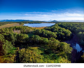 Aerial view at forest lake summer day