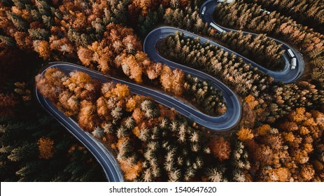 Aerial view of forest road in beautiful autumn 