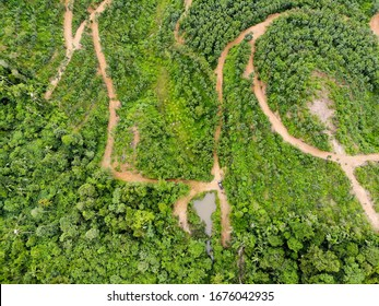 aerial view of a forest with small lake with road in national park Malaysia.