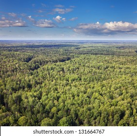 Aerial view of the forest under clouds during the summer.