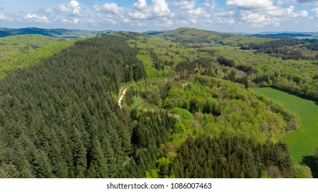 aerial view of the forests of Jura