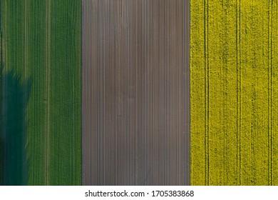 Aerial view. Furrows row pattern in a plowed field prepared for planting crops in spring. Growing crop in springtime.