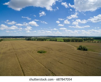 aerial view of golden wheat field with blue sky in germany
