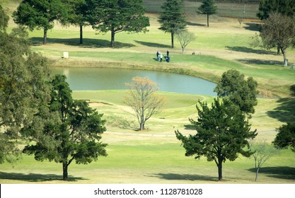 Aerial view of golf players on a lush golf course.