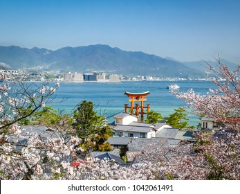 Aerial view of the Great Torii gate floating on the sea with cherry blossoms  in Miyajima, Japan.