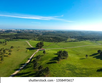 Aerial view from a green field with a path in a farm. Drone Photo