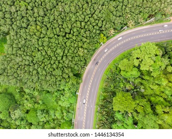 Aerial view of green forest and mountain with rural road going throughs tropical forest .