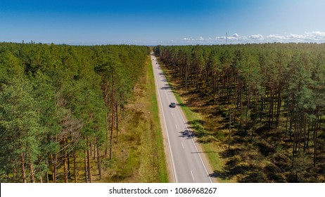 Aerial view of green forest and a road captured from above during bright sunny day.
