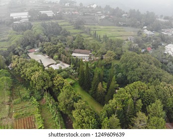 Aerial view of green hill in Cipanas, West Java Indonesia