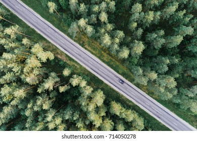 Aerial view of green pine forest and a road captured from above during  sunset.