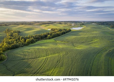 aerial view of green soybean fields s in a valley of the Missouri River, near Glasgow, MO, late summer