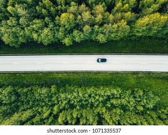 Aerial view of green summer forest with a road. Captured from above with a drone