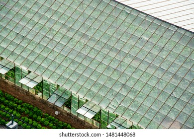 Aerial View of Greenhouse stock photo