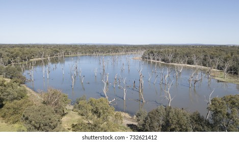 Aerial view of Gum swamp near the town of  Forbes New South Wales, Australia.
