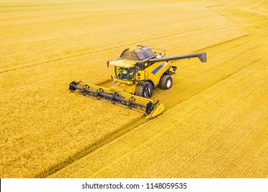 Aerial view of harvest. Combine harvester harvesting golden wheat field. Agriculture from scenic drone view. Czech republic, European union.