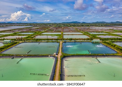 Aerial view of the High technology white shrimp ( prawn ) farm with aerator pump in front of Kien Luong, Kien Giang, Vietnam.
