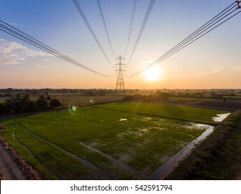 Aerial View of High Voltage Electricity Tower on Green Rice Field at Sunset.