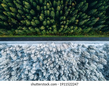 Aerial view of a highway road through the forest in summer and winter.