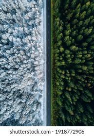 Vue aérienne d'une route nationale traversant la forêt en été et en hiver.