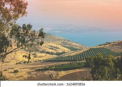 Aerial view from hill of  the Sea of Galilee, Tiberias,  Israel