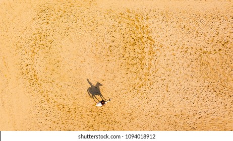 Aerial view of horse rider and horse on training ground at sunset.