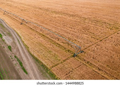 Aerial view of irrigation sprinkler in wheat field from drone point of view