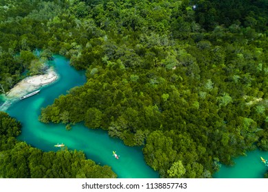aerial view of kayaking along the mangrove forest of Ko Payam, Ranong, Thailand